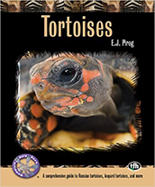 Tortoises: A Comprehensive Guide Paperback Book