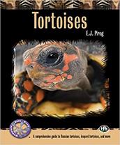 Tortoises: A Comprehensive Guide Paperback Book