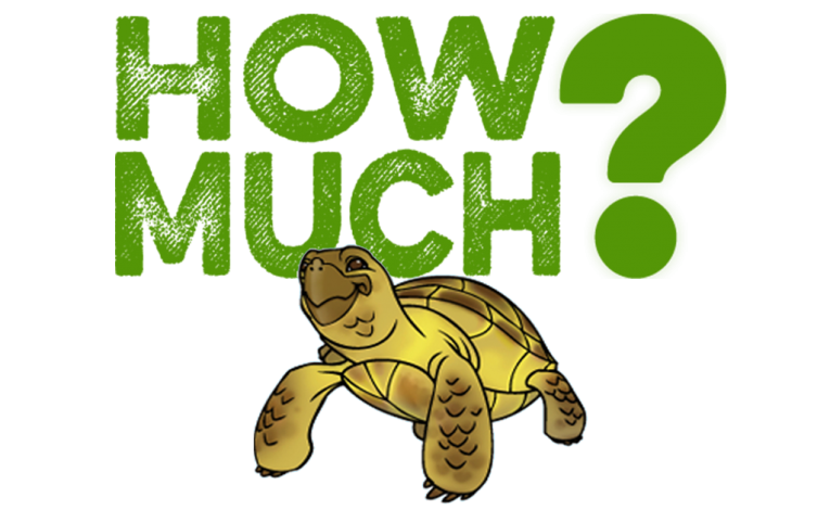 How Much Does a Russian Tortoise Cost?